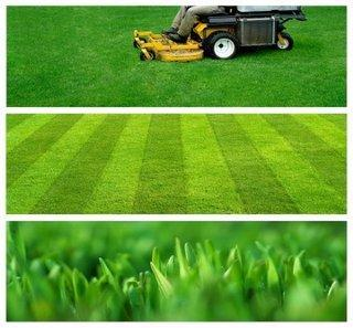 lawn-mowing-contracts