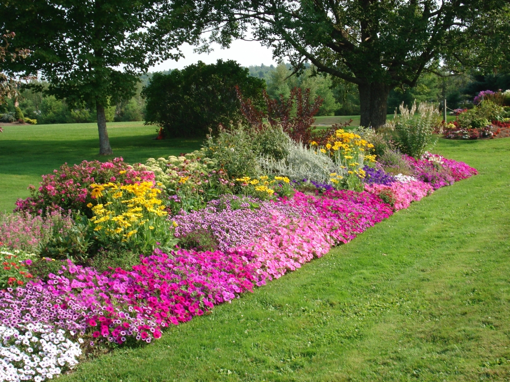 Landscaping in utica ny stone age landscaping offers for Landscape garden ideas pictures
