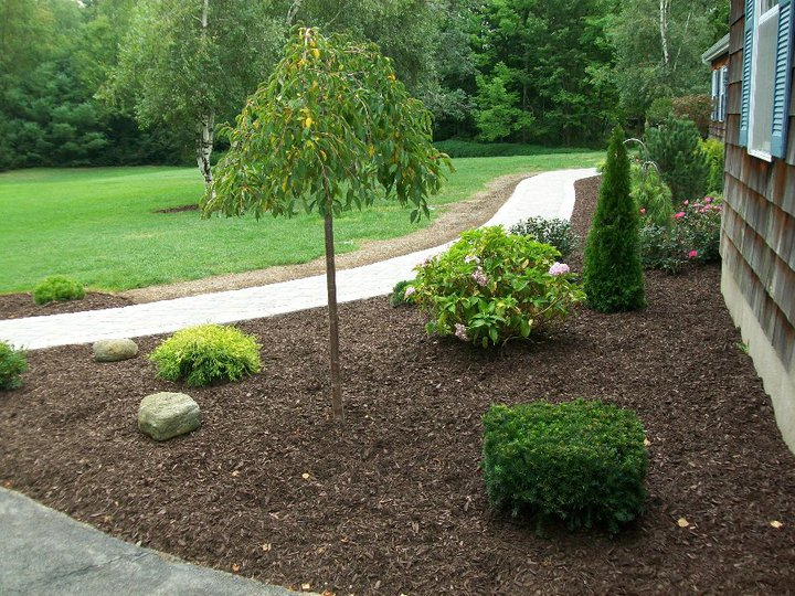 Landscaping With Stone Mulch Pictures : Landscaping with dark brown mulch stone age