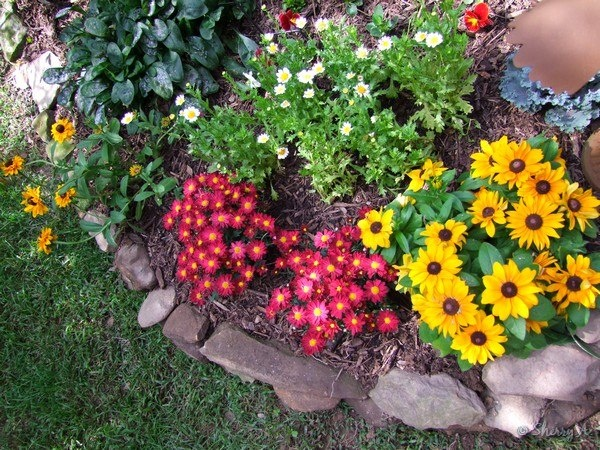 Hot Flower Garden : Landscaping in utica ny stone age offers